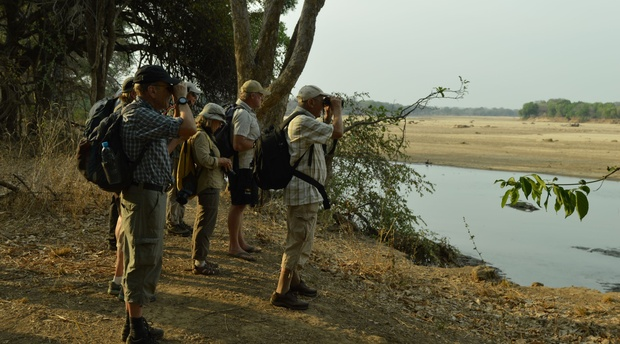 budget walking safari Zambia